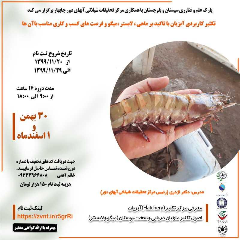 تکثیر کاربردی آبزیان با تاکید بر ماهی ، لابستر و میگو و فرصت های کسب و کار آن